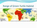 range of green turtle habitat