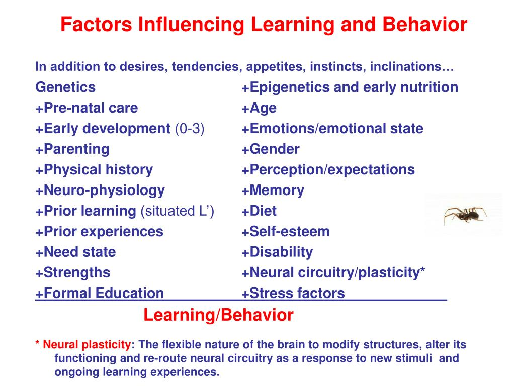 Factors Influencing Learning and Behavior