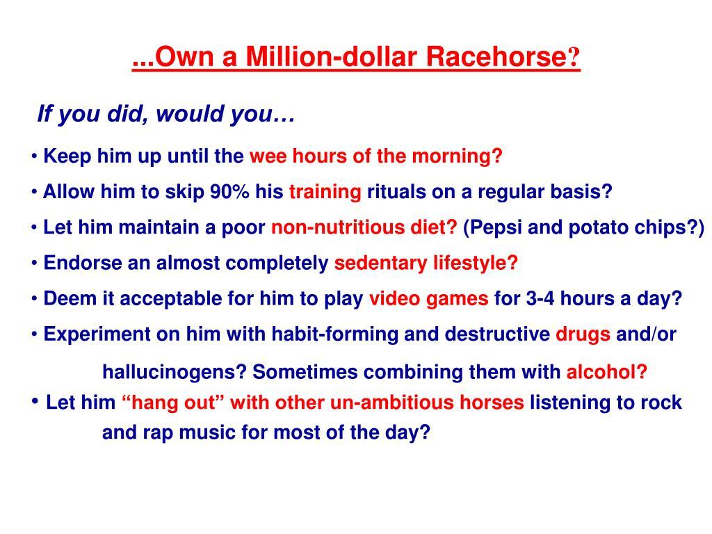 ...Own a Million-dollar Racehorse