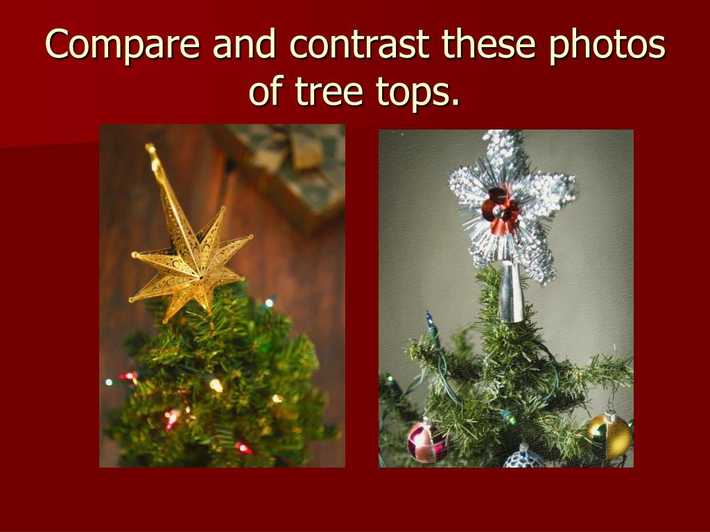 Compare and contrast these photos of tree tops.