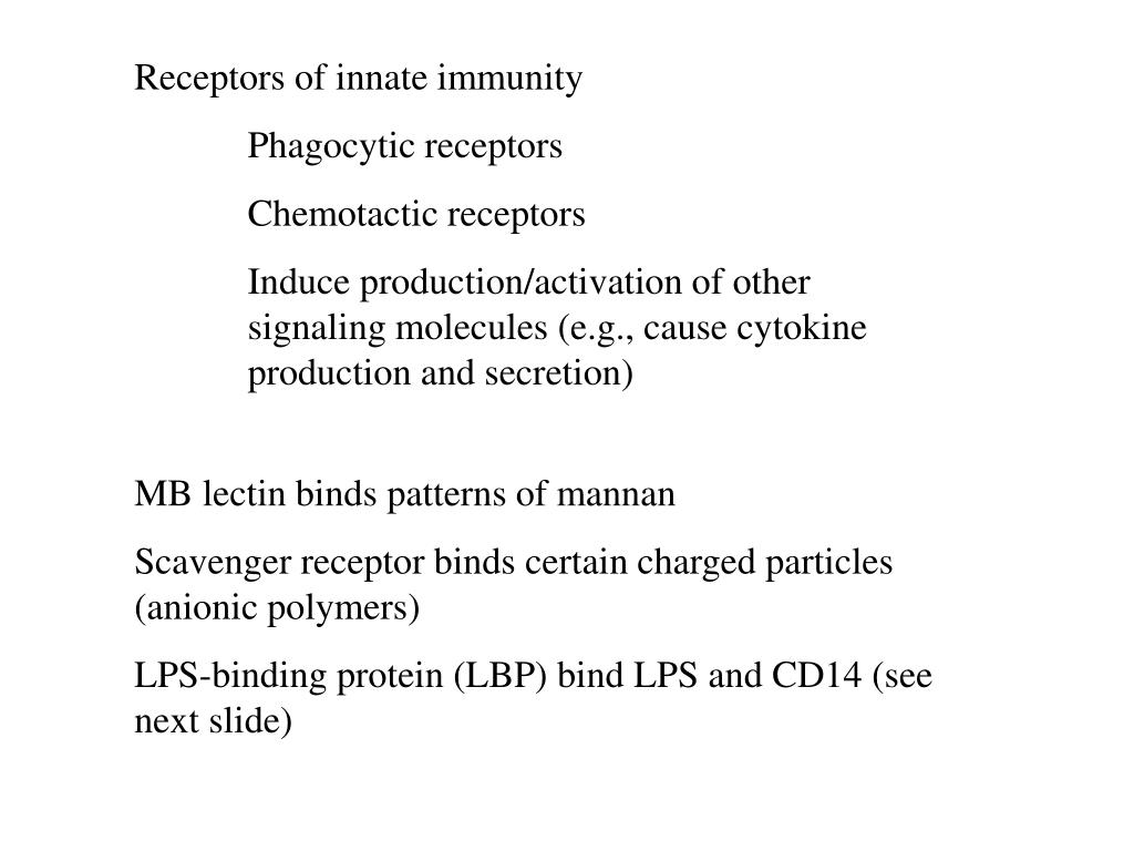 Receptors of innate immunity