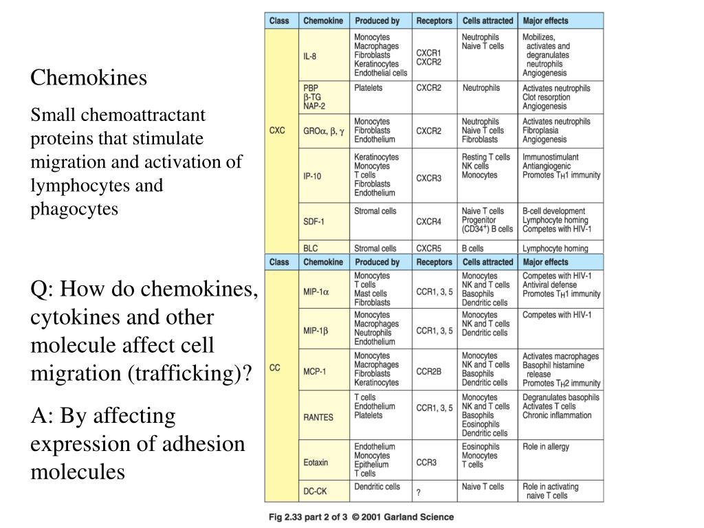 Chemokines