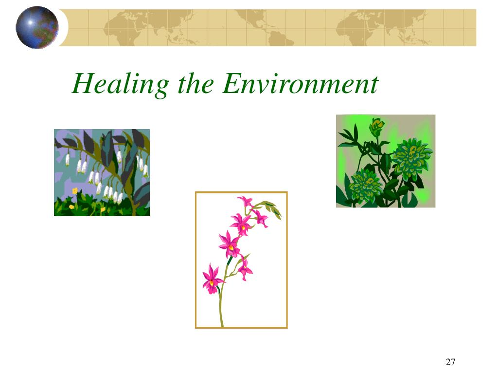 Healing the Environment