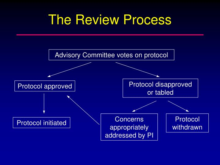 The Review Process