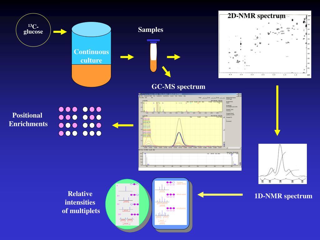 2D-NMR spectrum