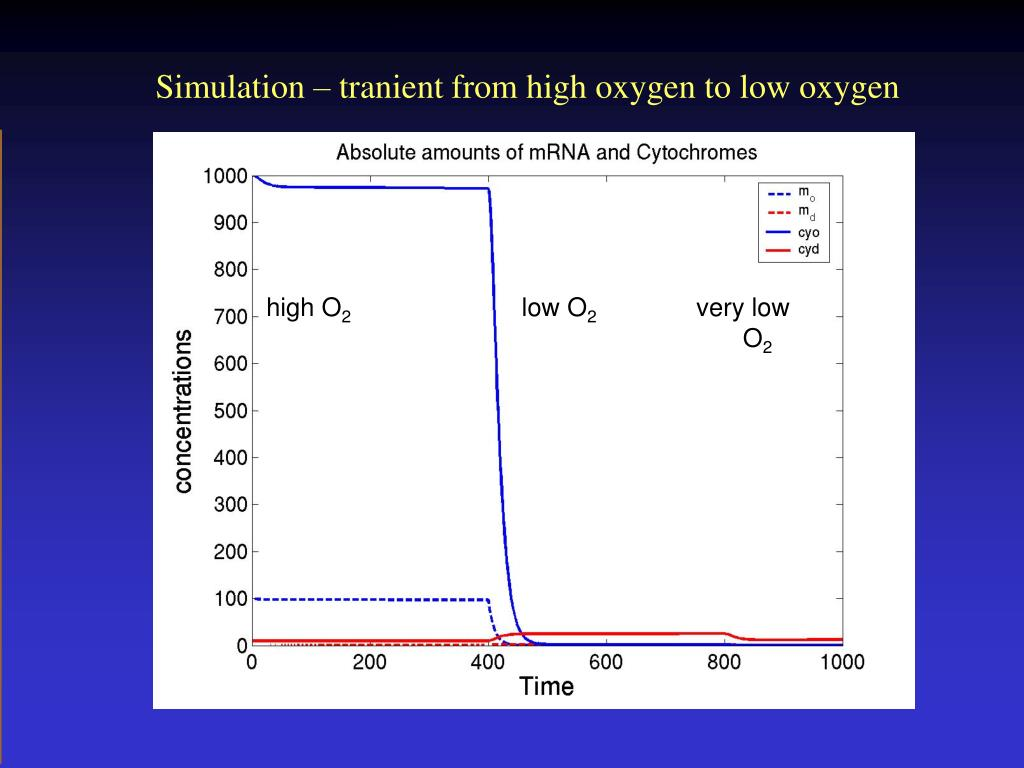 Simulation – tranient from high oxygen to low oxygen
