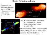 radio galaxies and jets