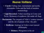 nuova voltiana45