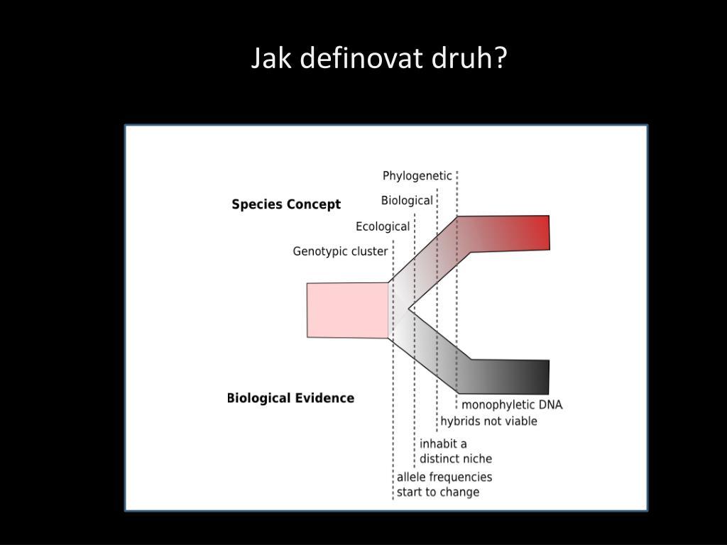 Jak definovat druh?