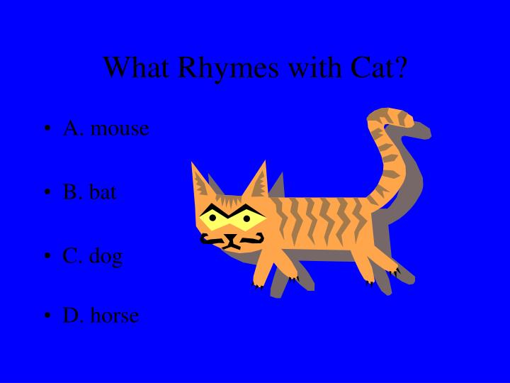What rhymes with cat