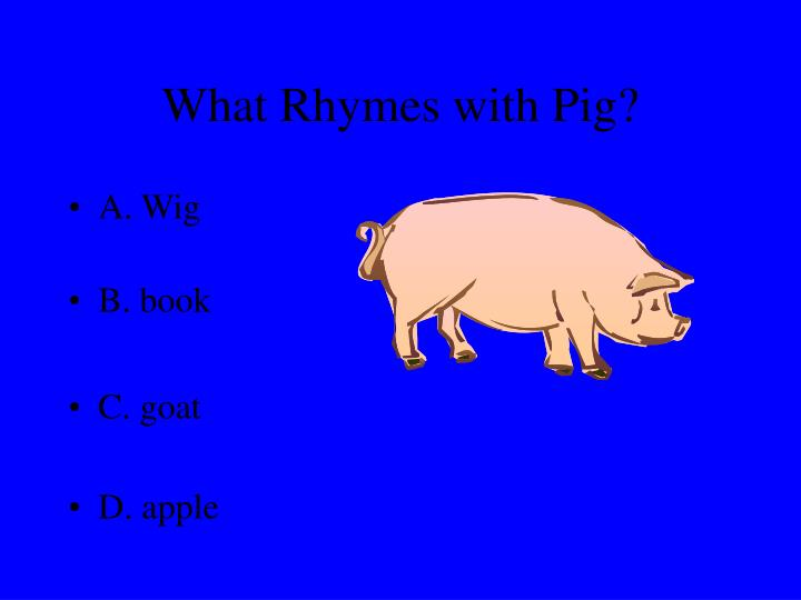 What rhymes with pig