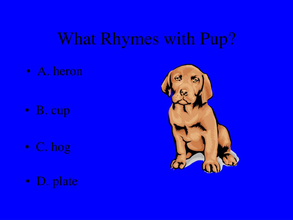 What Rhymes with Pup?