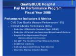 qualityblue hospital pay for performance program fiscal year 2008