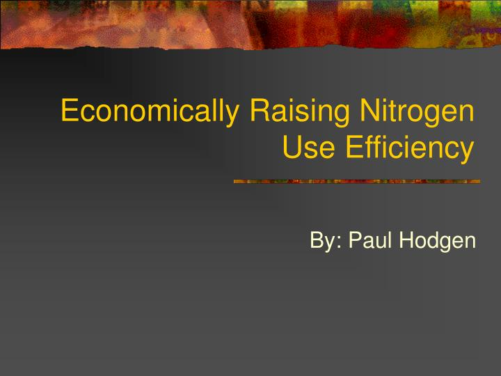 Economically raising nitrogen use efficiency l.jpg