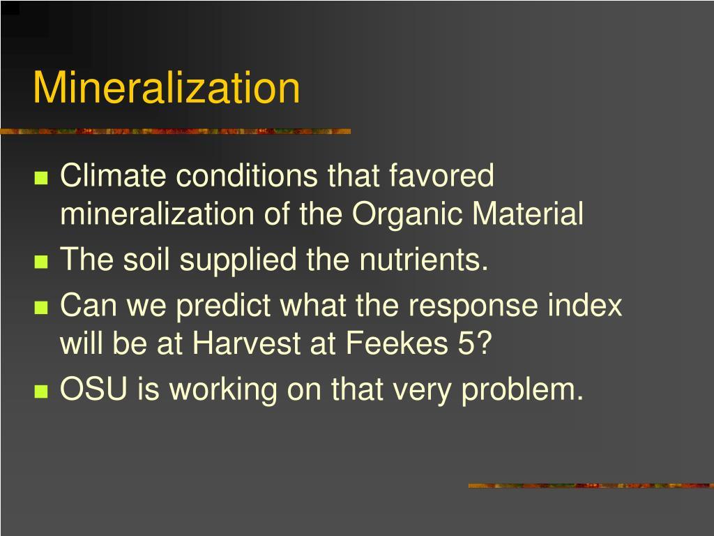 Mineralization