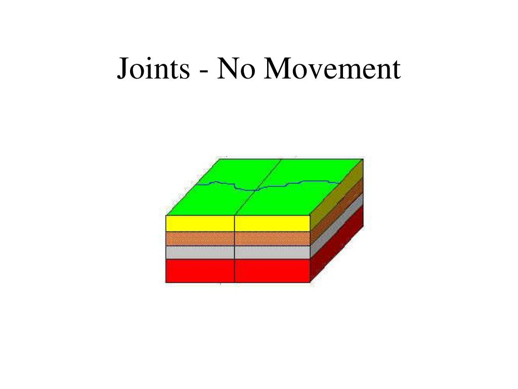 Joints - No Movement