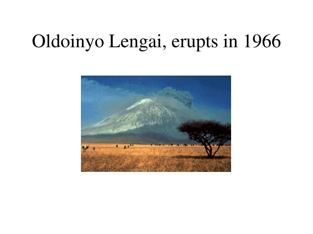 Oldoinyo Lengai, erupts in 1966
