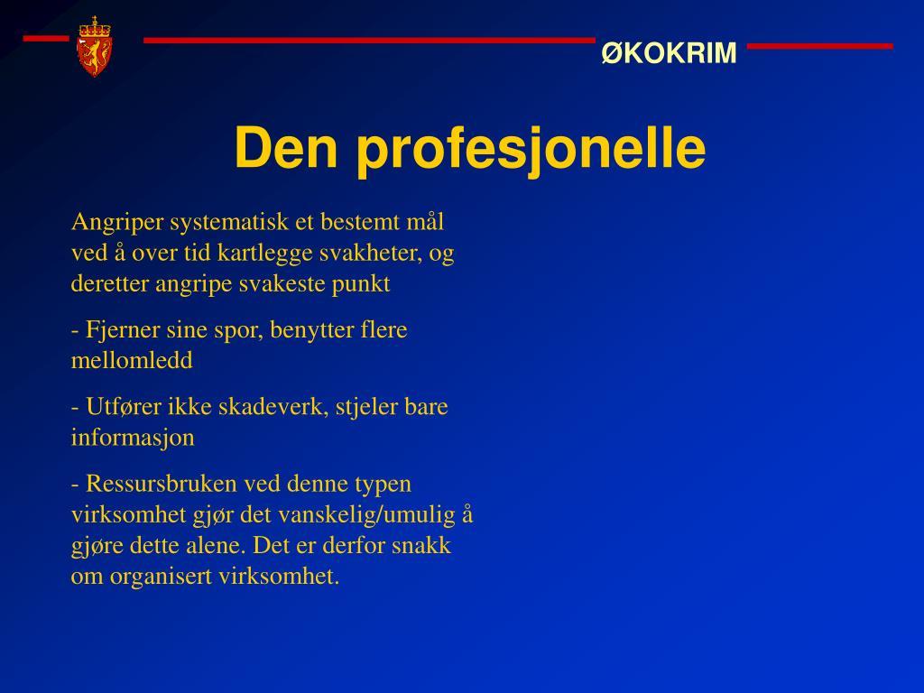Den profesjonelle