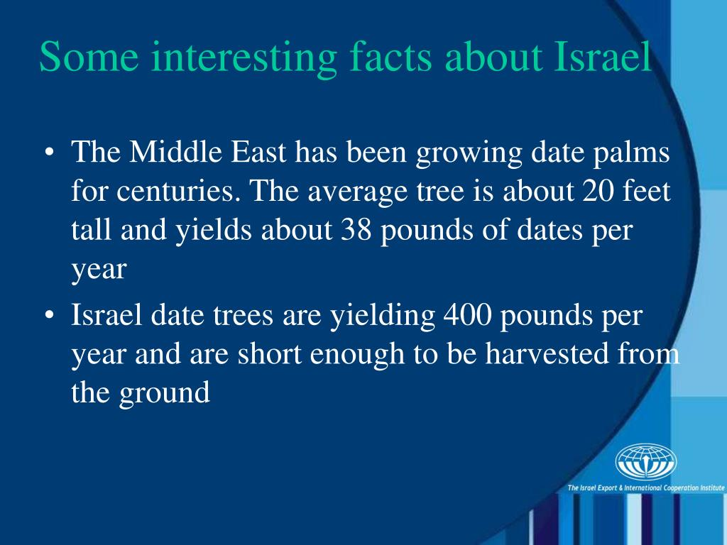 The Middle East has been growing date palms for centuries. The average tree is about 20 feet tall and yields about 38 pounds of dates per year