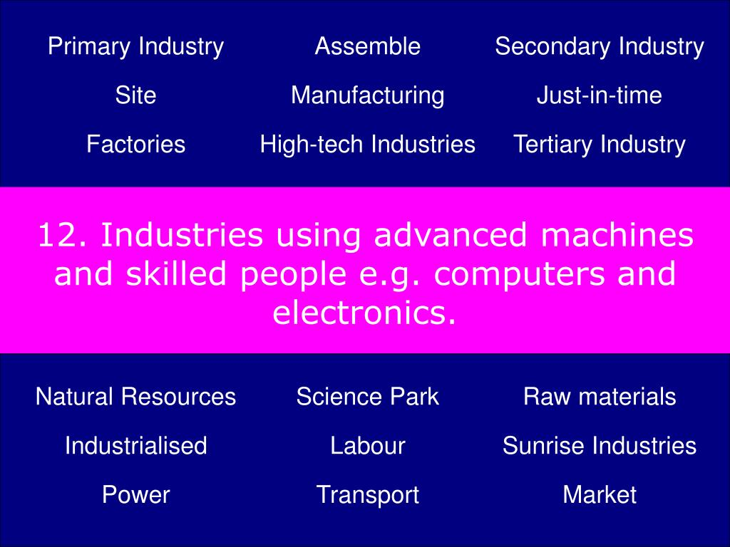 12. Industries using advanced machines and skilled people e.g. computers and electronics.