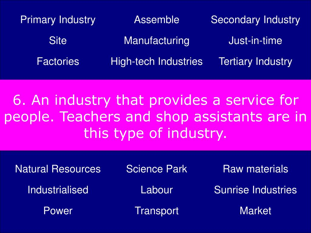 6. An industry that provides a service for people. Teachers and shop assistants are in this type of industry.