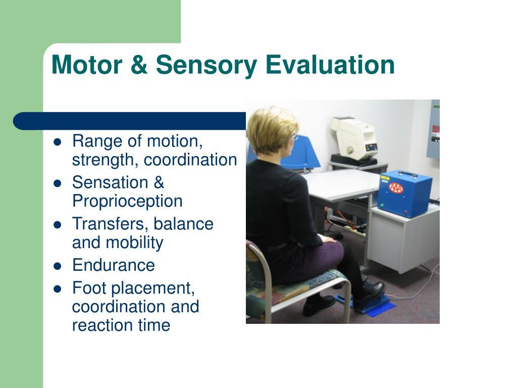 Motor & Sensory Evaluation