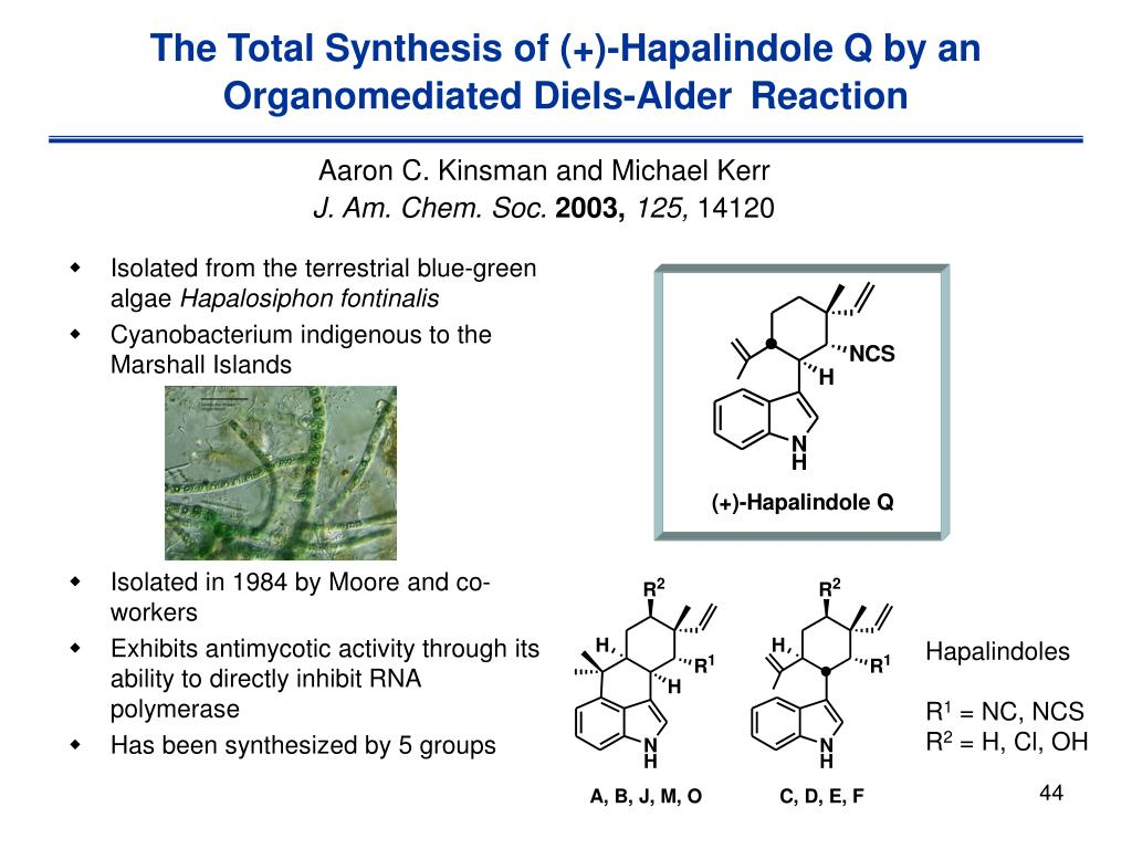 The Total Synthesis of (+)-Hapalindole Q by an Organomediated Diels-Alder