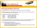housing and basic services