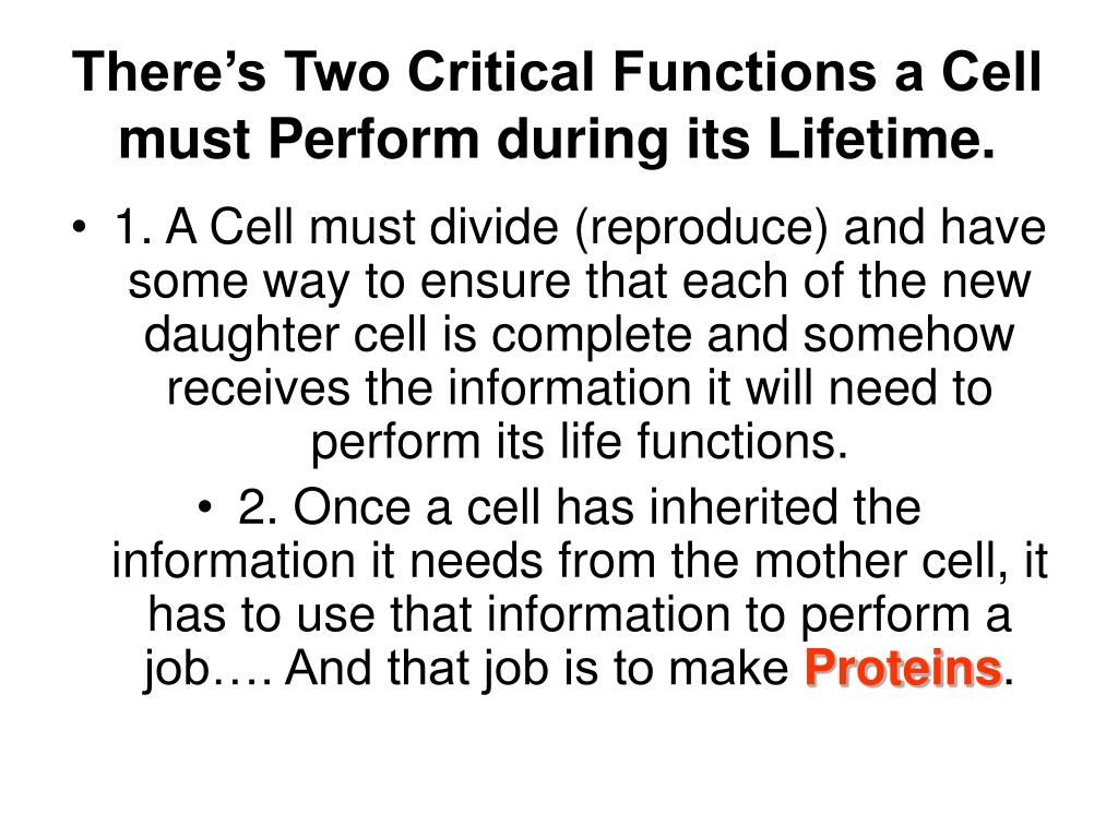 There's Two Critical Functions a Cell must Perform during its Lifetime.