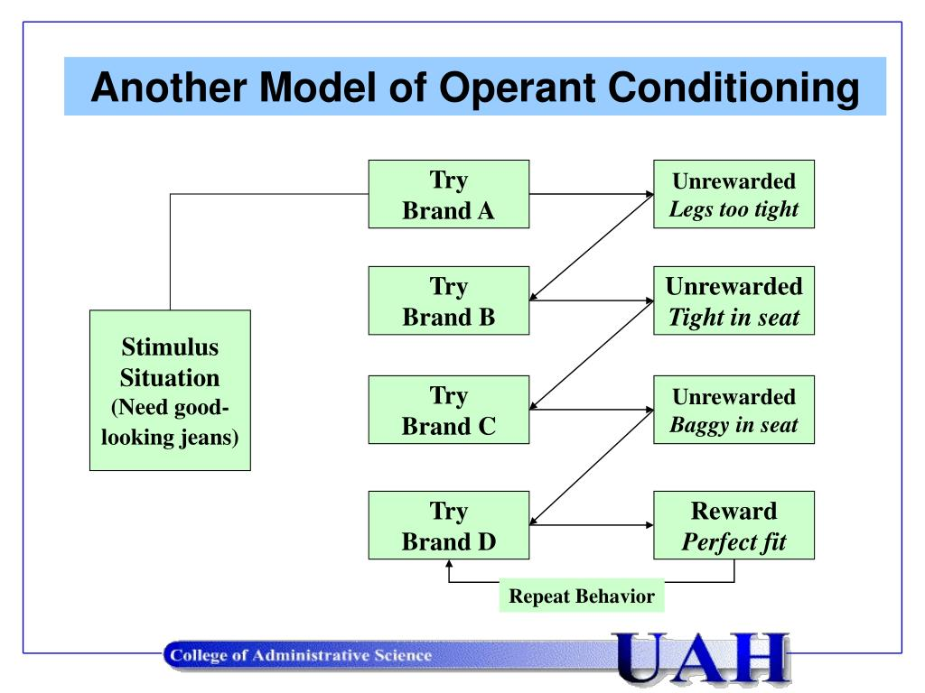 Another Model of Operant Conditioning