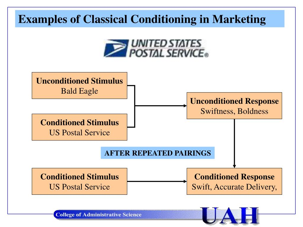 Examples of Classical Conditioning in Marketing