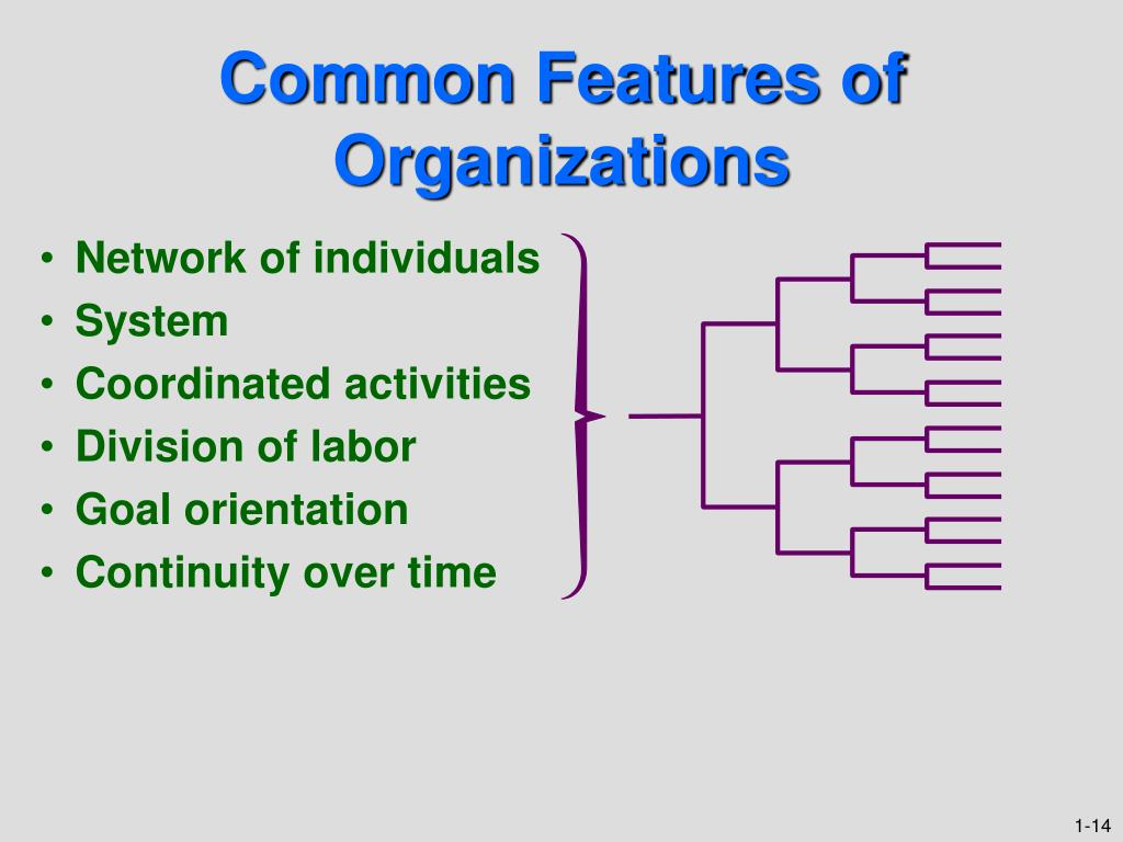 features of an organization Organizational culture = a system of shared meaning held by members that distinguishes the organization from other organizations key characteristics of an organizational culture: innovation and risk taking.