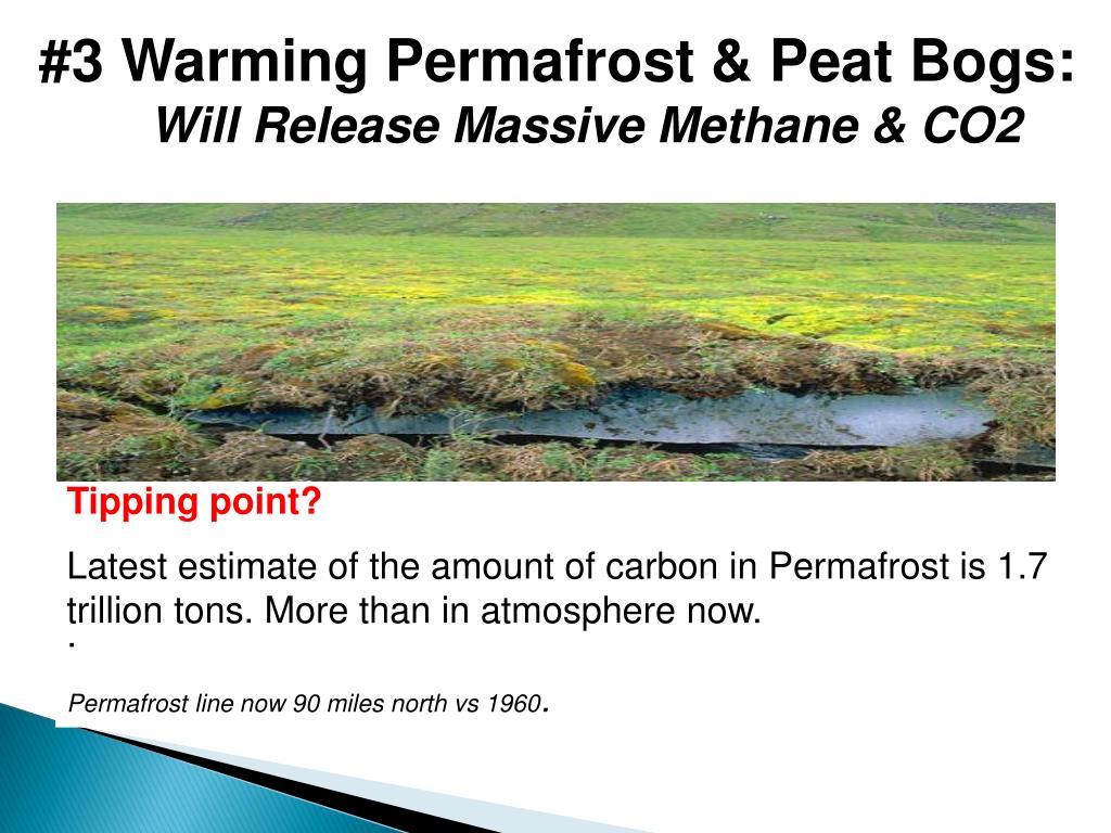 #3 Warming Permafrost & Peat Bogs: