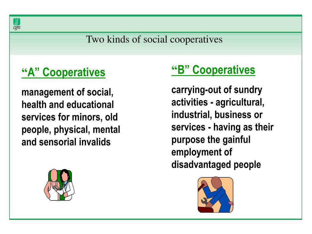 Two kinds of social cooperatives
