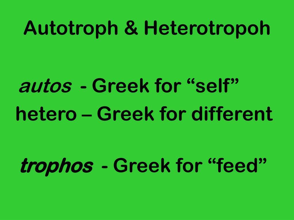 Autotroph & Heterotropoh