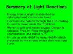 summary of light reactions
