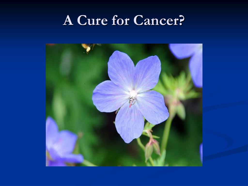 A Cure for Cancer?