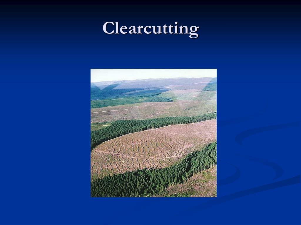 Clearcutting