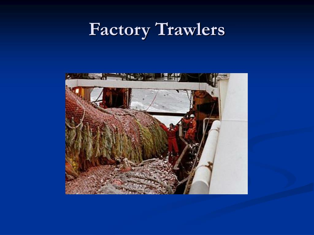 Factory Trawlers