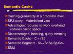 semantic cache
