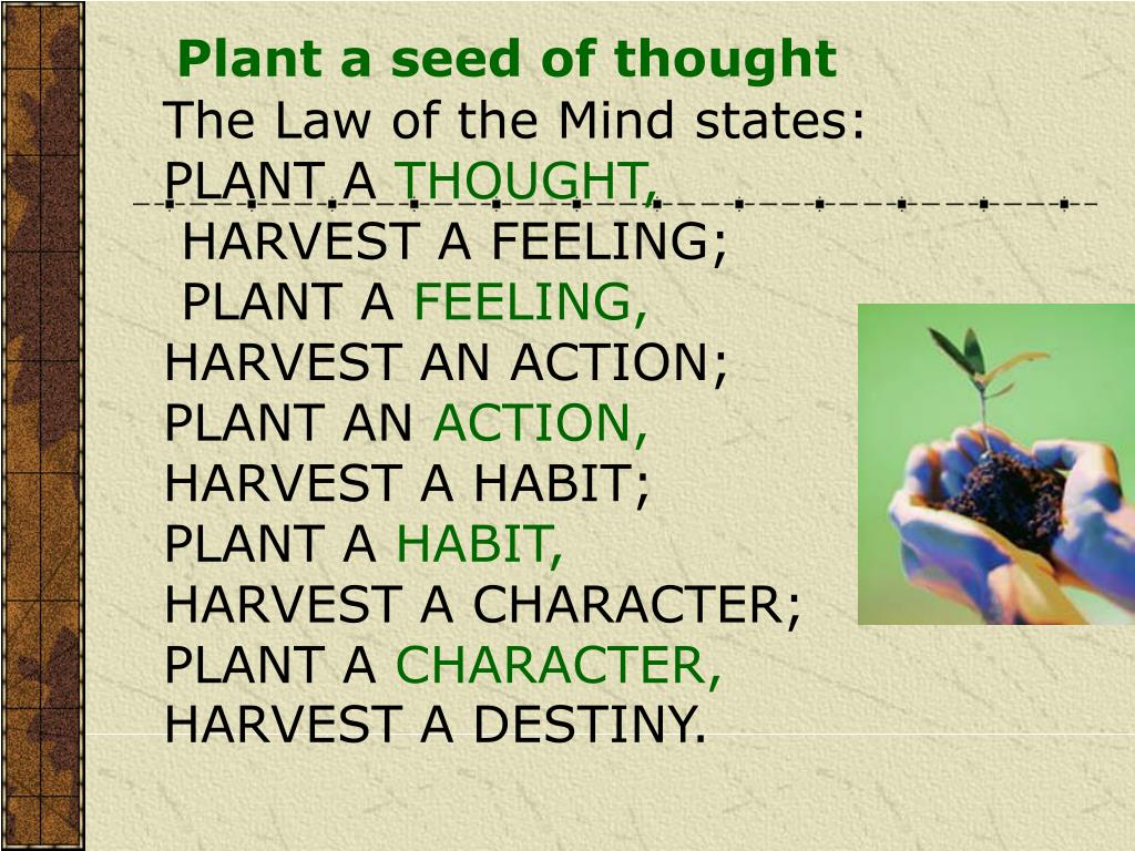 Plant a seed of thought