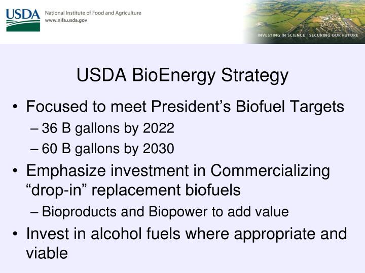 Usda bioenergy strategy