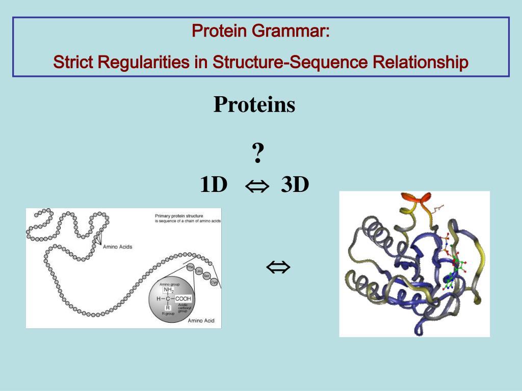 Protein Grammar: