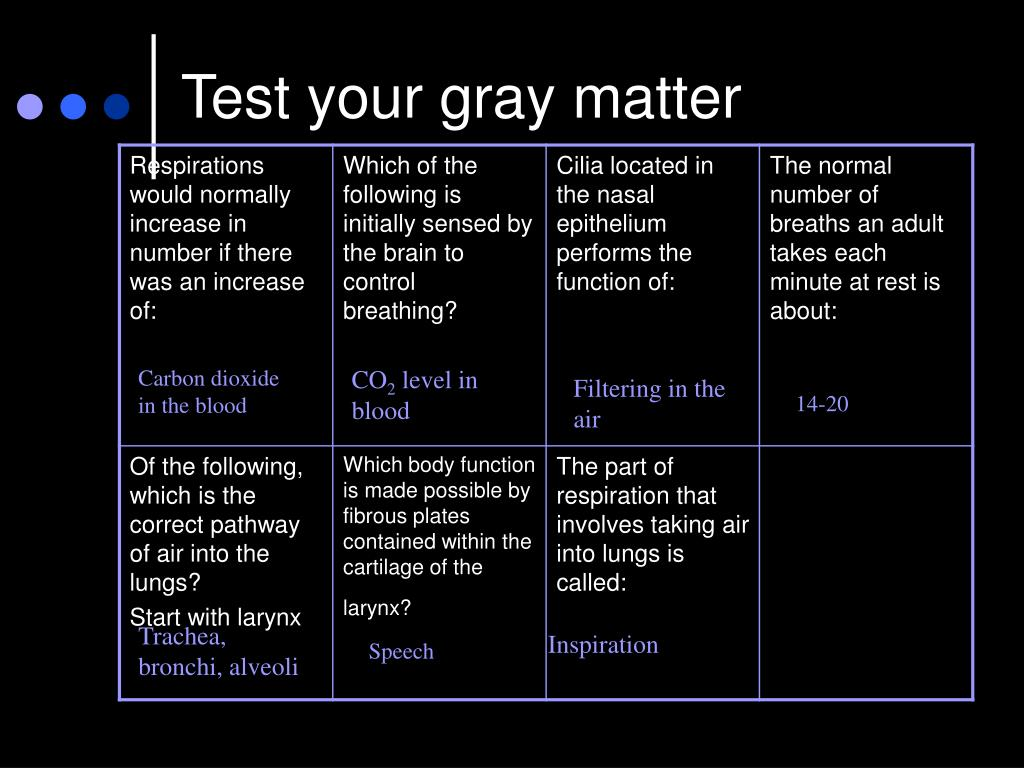 Test your gray matter