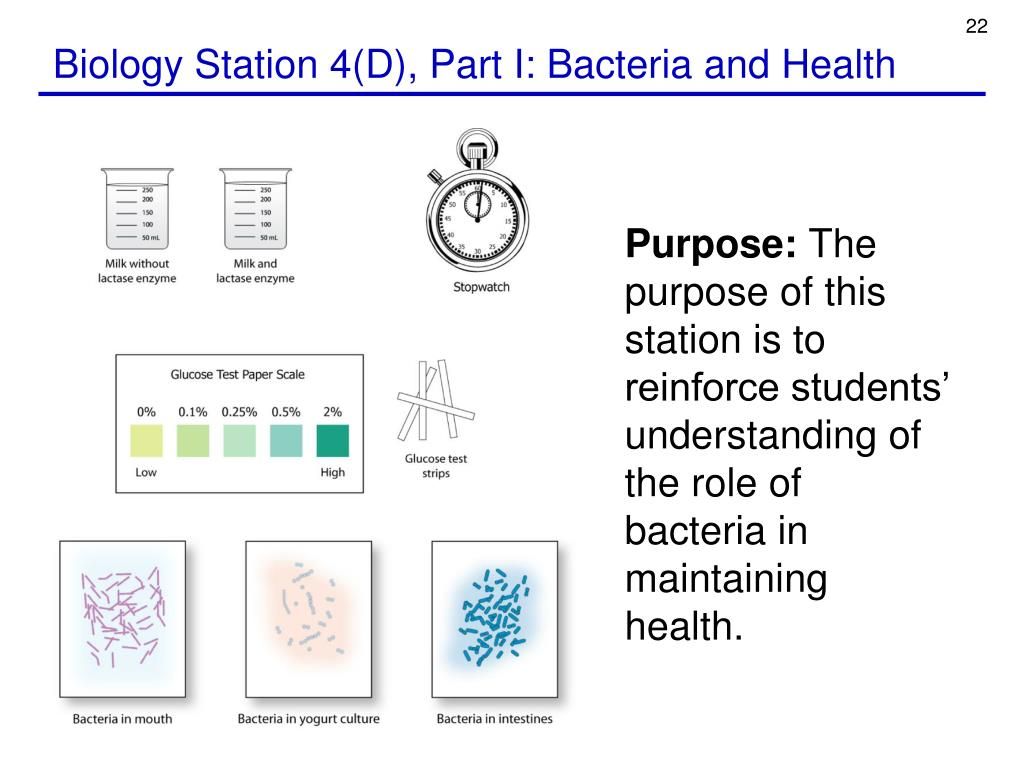 Biology Station 4(D), Part I: Bacteria and Health