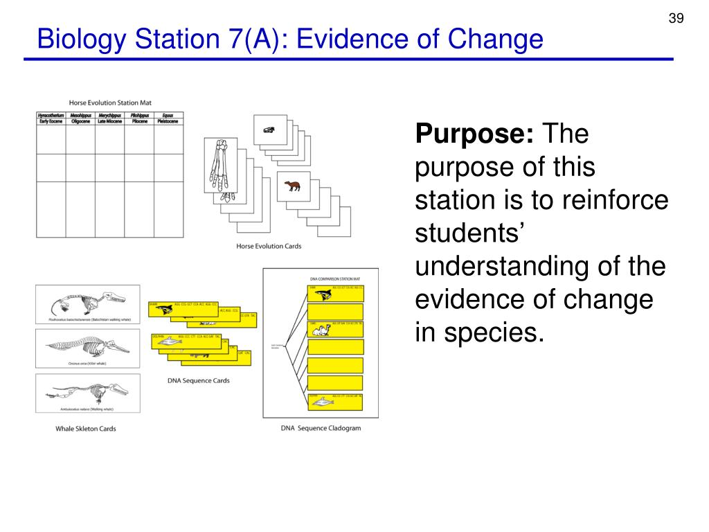 Biology Station 7(A): Evidence of Change