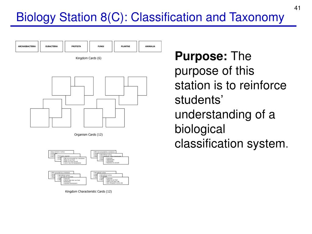Biology Station 8(C): Classification and Taxonomy