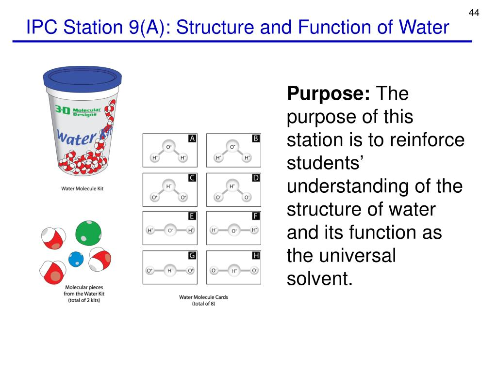 IPC Station 9(A): Structure and Function of Water