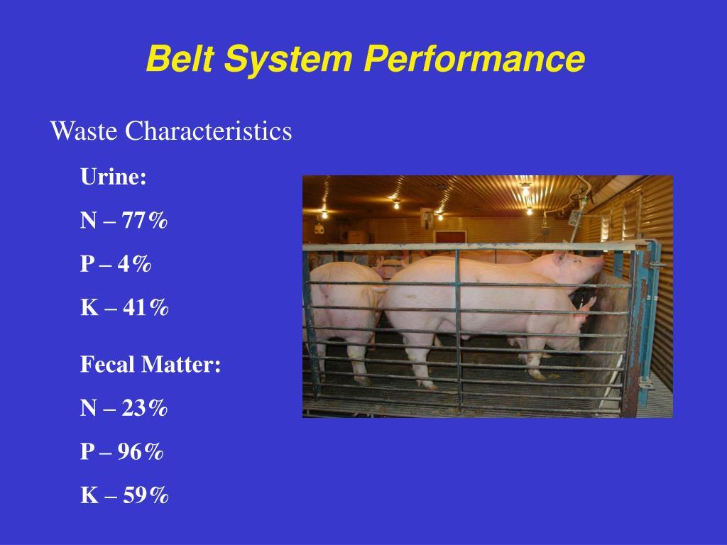 Belt System Performance