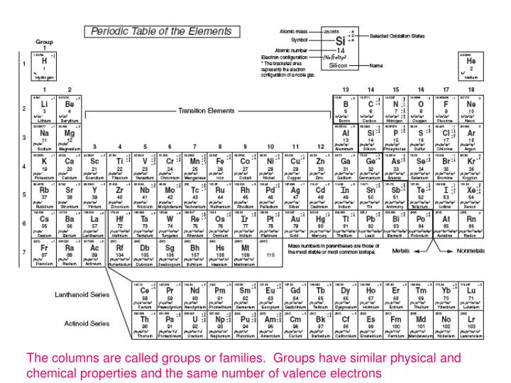 The columns are called groups or families.  Groups have similar physical and chemical properties and...